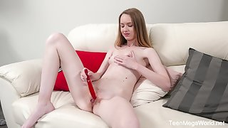 Cute blonde Alisa masturbates matchless using her enforce a do without plus red dildo
